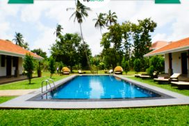 Rooms near colombo airport with trip adviser Excellent award